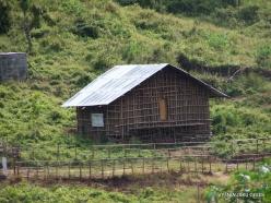 West Papua. Arfak Mountains. Hingk. Papuan village (2)