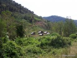 West Papua. Arfak Mountains. Hingk. Papuan village