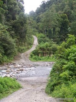 West Papua. Arfak Mountains. Kali Utai (3)