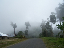 West Papua. Arfak Mountains. Meni (1)