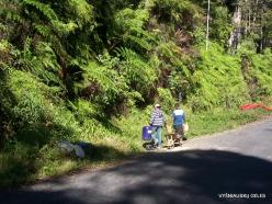 West Papua. Arfak Mountains. Meni (18)
