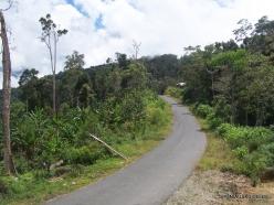 West Papua. Arfak Mountains. Meni (9)