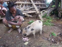 West Papua. Arfak Mountains. Meni. Papuan village (2)