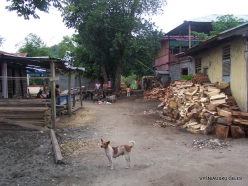 West Papua. Manokwari. Suburb of Papuan peoples (3)