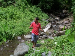 West Papua. Warkapi. Lowland rainforest (7)