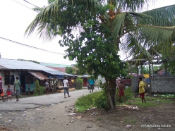 West Papua. Warkapi
