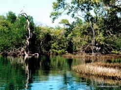 Margarita Isl. Laguna de la Restinga